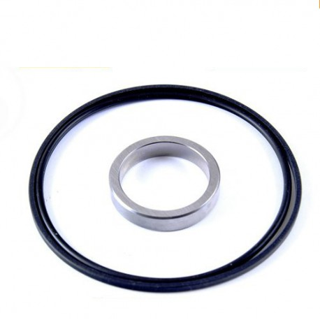Buy BMW Single Vanos Seal and Rattle Ring Kit BMW M52 M50 Z3 E39
